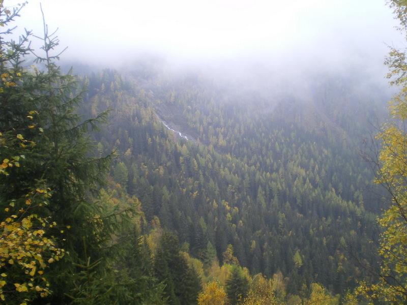 Подмосковные леса на 1800м....посмотреть следующее фото...